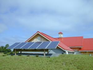 redtail vineyard off grid
