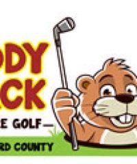 Caddy Shack Mini Golf